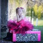 Hot Pink and Black Tutu Dress Toddler