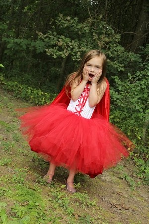 Red Riding Hood Girls Tutu Dress Costume