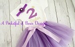 Lavender Tutu Birthday Outfit 3 piece