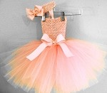 Peach Tutu Dress and Headband
